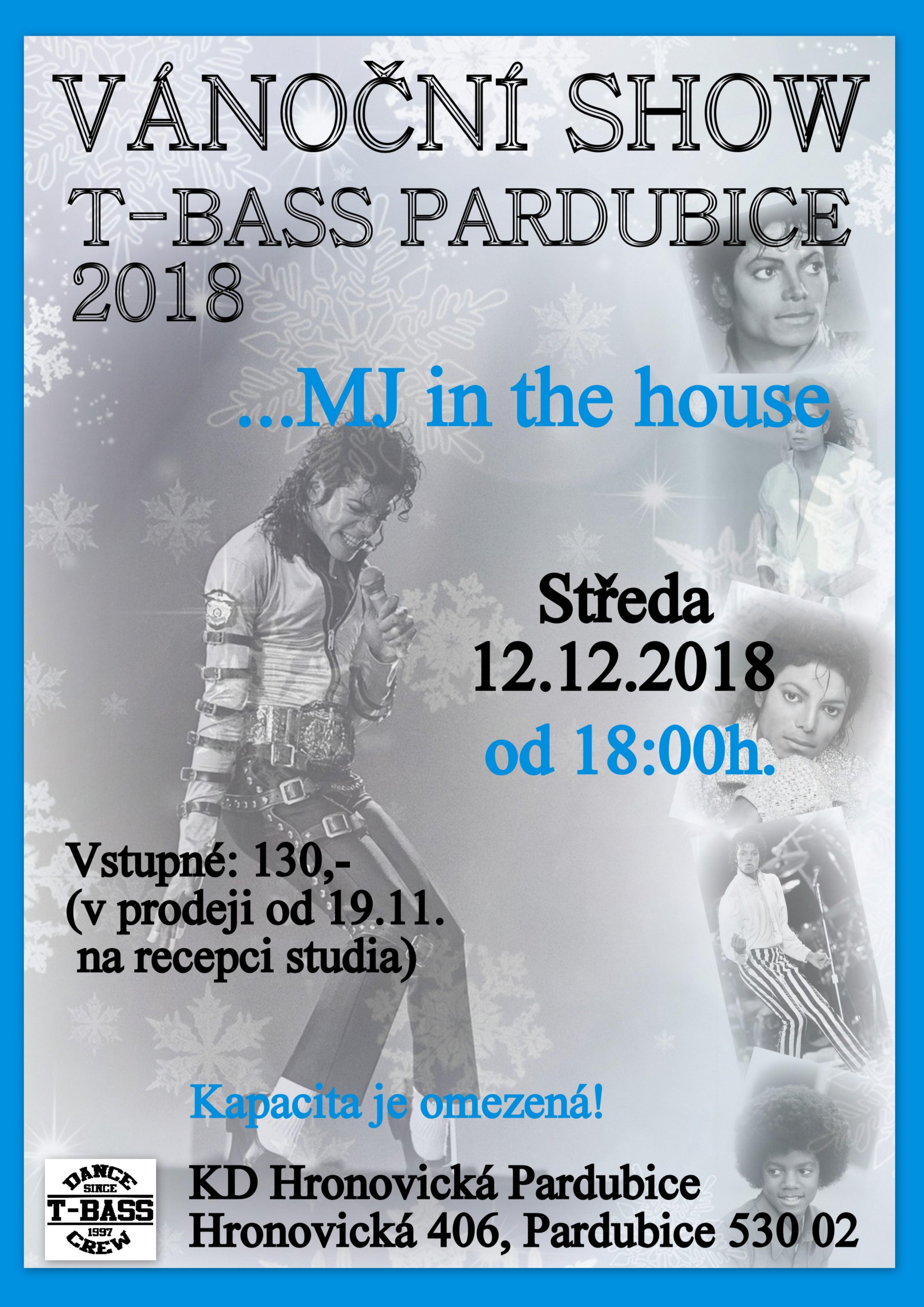 Vánoční show Pardubice 2018
